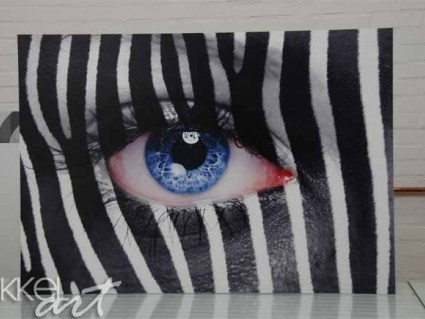 Photo sur Forex zebra face
