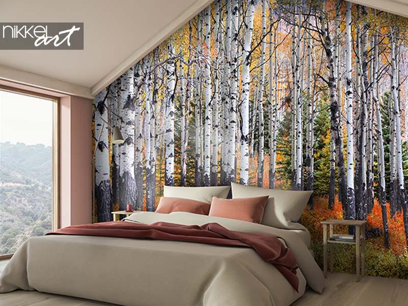 Papiers Peints photo De nombreux trembles dans une forêt en automne