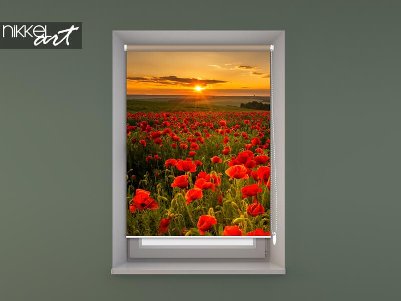 store enrouleur photo dans le cadre de la fenêtre