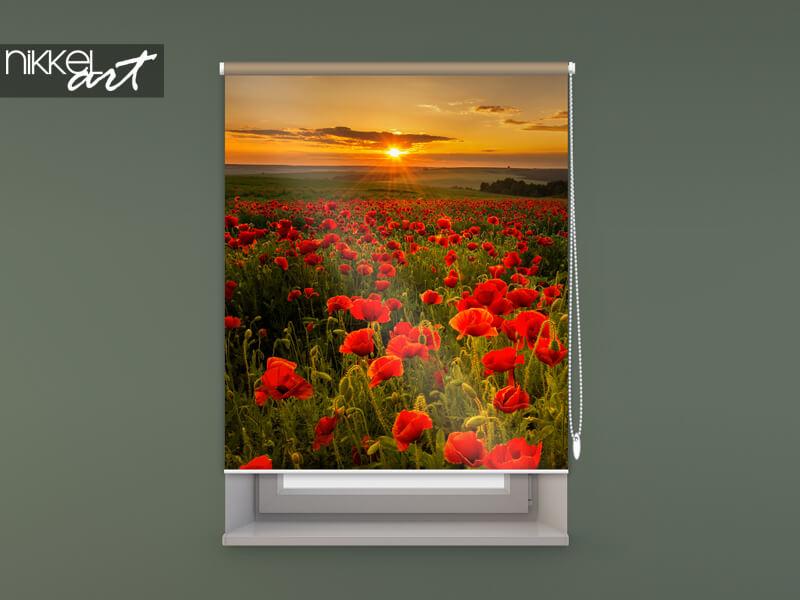 store enrouleur photo sur le cadre de la fenêtre