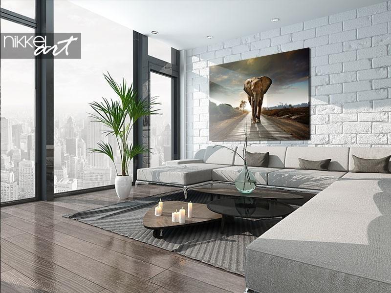 Une photo sur aluminium ou plexiglas: qu'est-ce que vous préférez ?