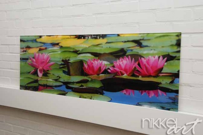 Cr dence de cuisine en verre imprim flore aquatique for Credence cuisine verre imprime