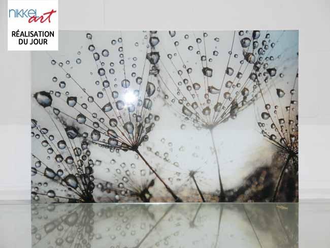 Cr dence de cuisine en verre imprim pissenlits et eau - Credence en verre pour cuisine ...