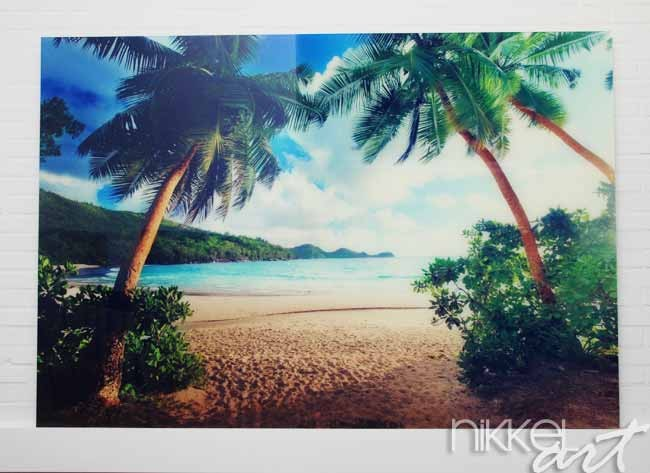 photo sur plexiglas tropical plage. Black Bedroom Furniture Sets. Home Design Ideas