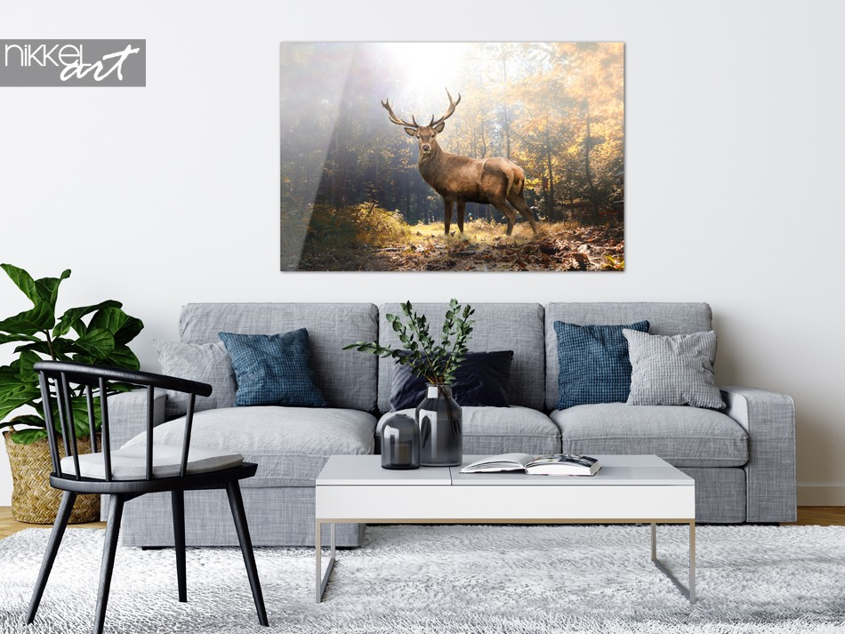 Photo sur un Cerf en Plexiglas Dans un Paysage d Automne