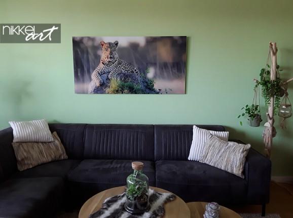 Photo sur plexiglas d'un léopard