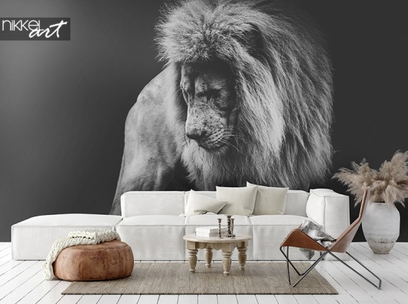 Lion d'Afrique sur papier peint photo