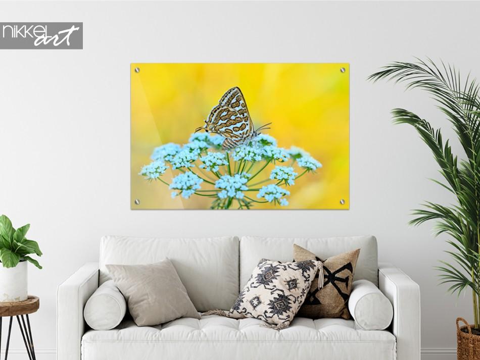 Peinture sur Papillon en Verre