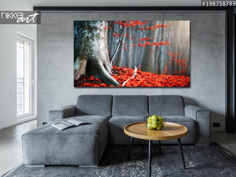 Photo sur Plexiglas Forêt d automne magique