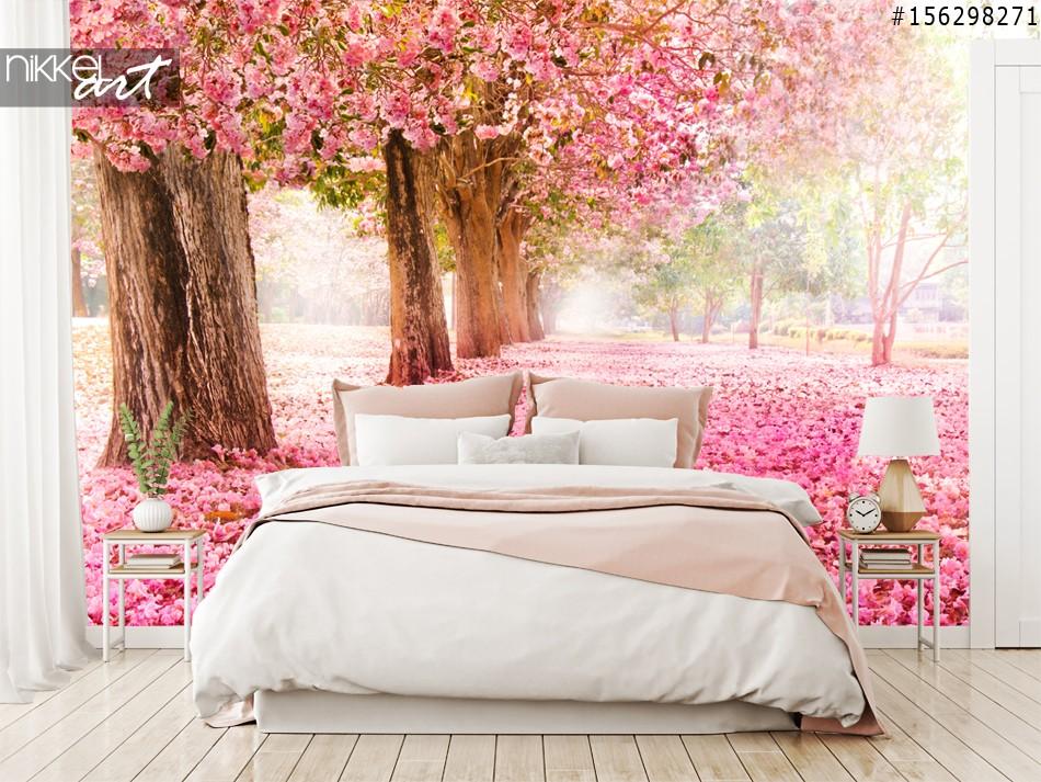 Papier Peint Photo Voie de cerisiers en fleurs