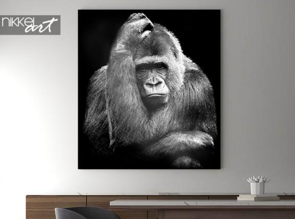 Gorille sur aluminium