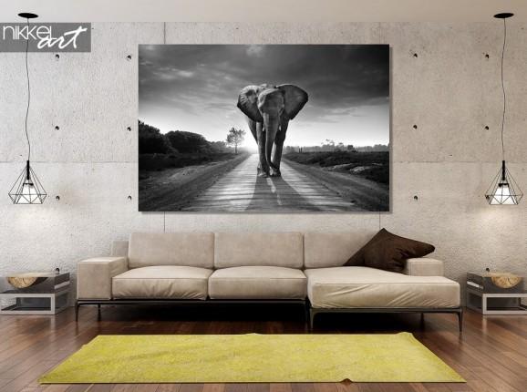 Photo sur Plexiglas éléphant noir et blanc