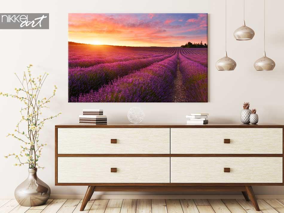 Photo sur Toile Lavendel