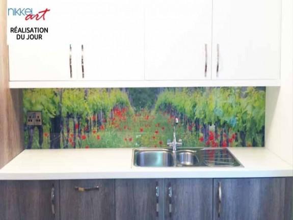 cr dence de cuisine en verre imprim legume. Black Bedroom Furniture Sets. Home Design Ideas