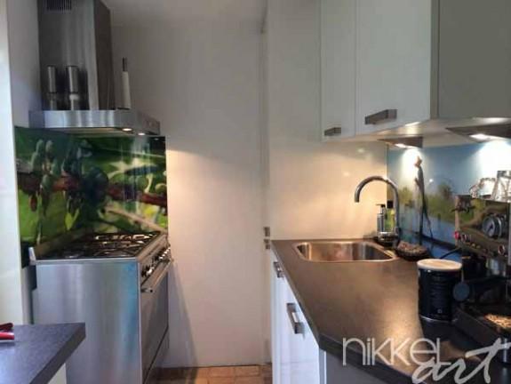 cr dence cuisine en verre avec d cor. Black Bedroom Furniture Sets. Home Design Ideas