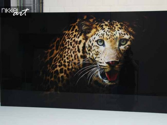 Photo sur Plexiglas Leopard