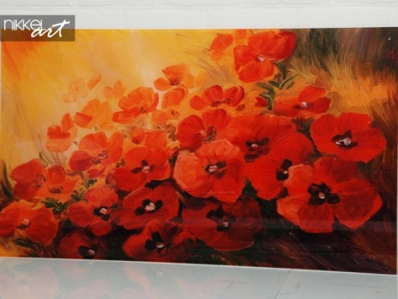 Photo sur Plexiglas Poppy