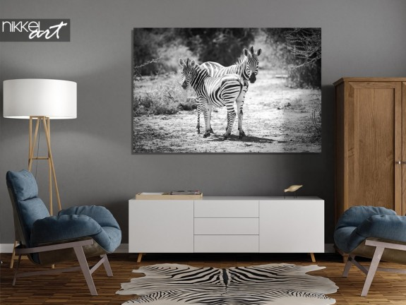 Photo sur Plexiglas Zebra