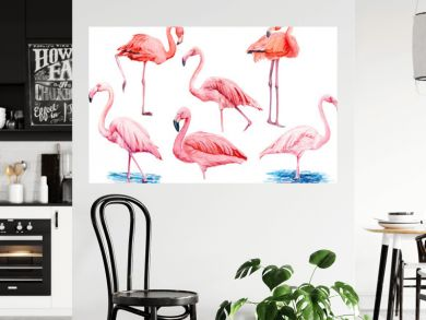 set beautiful birds, pink flamingos, hand drawing, watercolor illustration on isolated white background