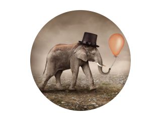 Éléphant avec un ballon